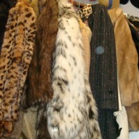 The Fur Debate: How to be Sustainable & Recycle Vintage Fur for Good Causes