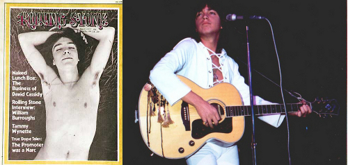 1970s celebrity icon david cassidy