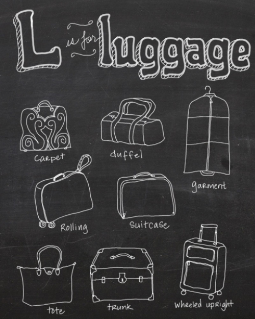 types of luggage graph