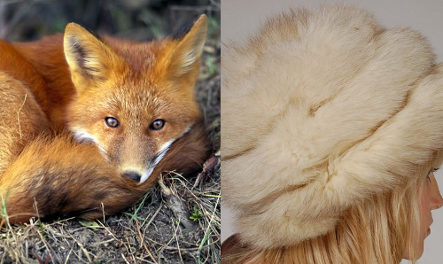 vintage fox fur