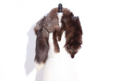 large body fox fur