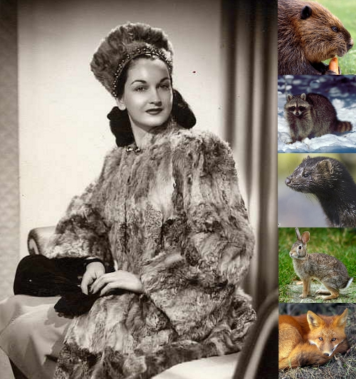 vintage fur collage