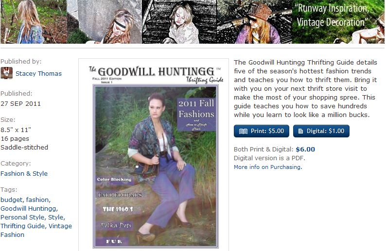 goodwill huntingg vintage and thrift ebook