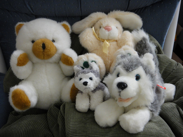 dont buy stuffed animals at thrift store