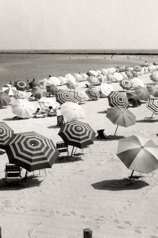 umbrellas on a beach in the 1950s