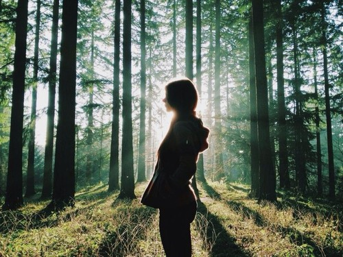 girl in forest with light