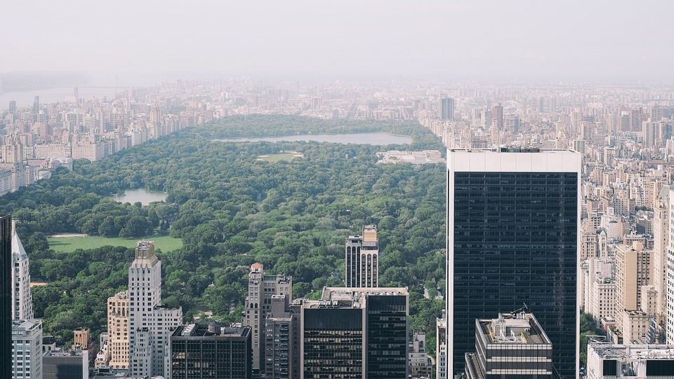 Central Park, New York, Nyc, Manhattan, New York City