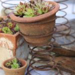 How to Make a Cute Bedspring Planter (Easy DIY)